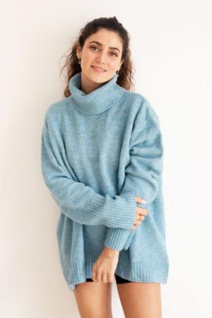 blue-dog-walker-sweater